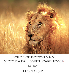 Wilds of Botswana & Victoria Falls with Cape Town - 14 days from $5,319 per person