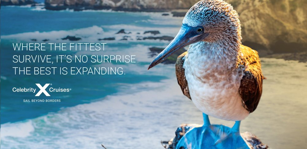 Let's go Galapagos! info@enjoyvacationing.com for more.