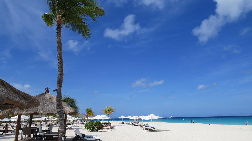 One of Aruba's 365 beaches. Let Enjoy Vacationing help you plan your perfect vacation!