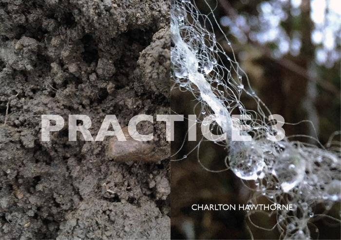 PRACTICE 3.jpg