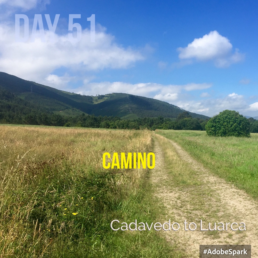 The Camino winds through a lovely grassy plain