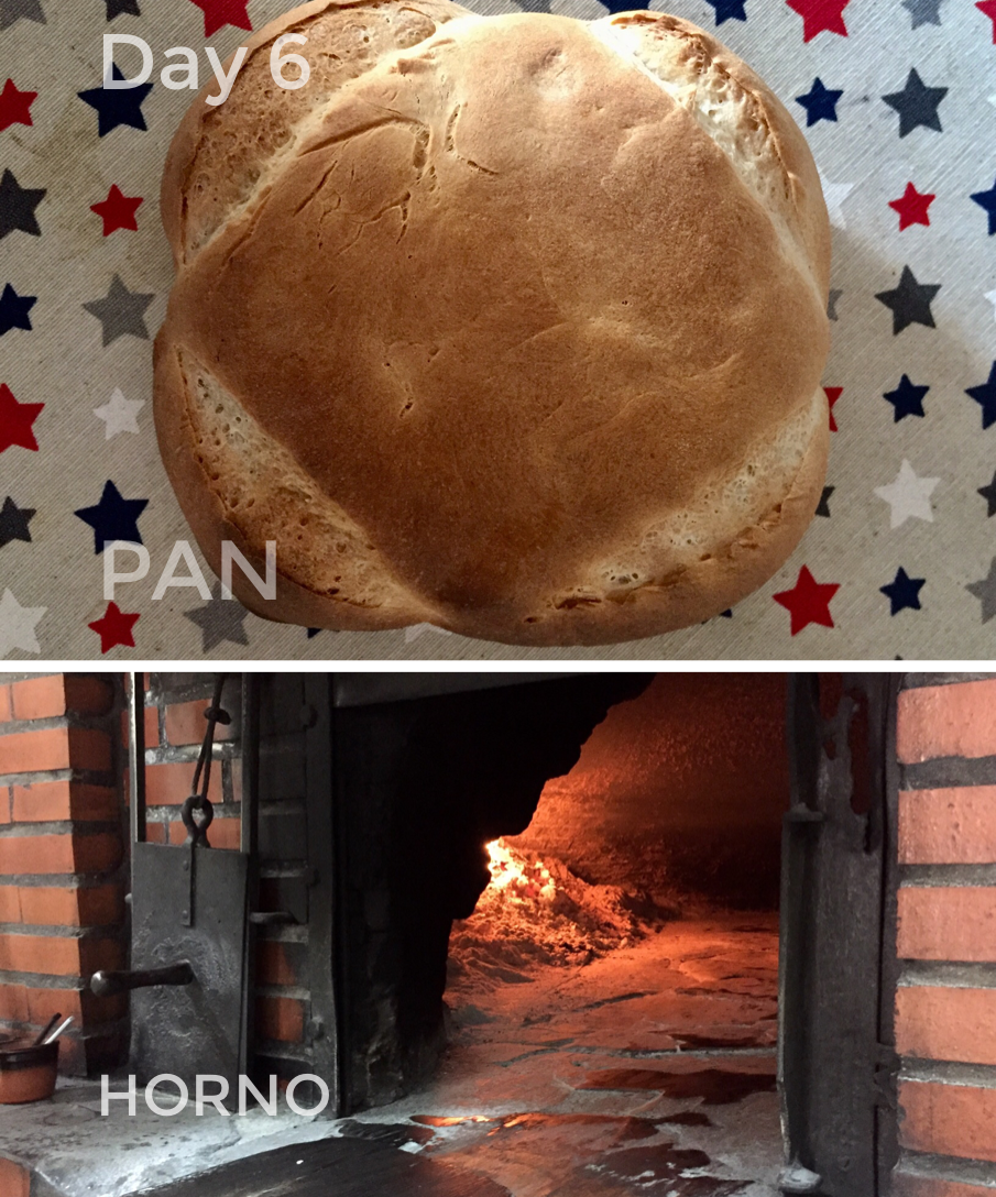 The wood burning oven is more than 200 years old.