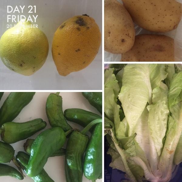 Limones, patatas, pimientos de Padron and lechuga.