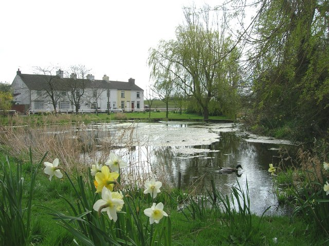 Kilham Duck Pond, copyright Steve Brown