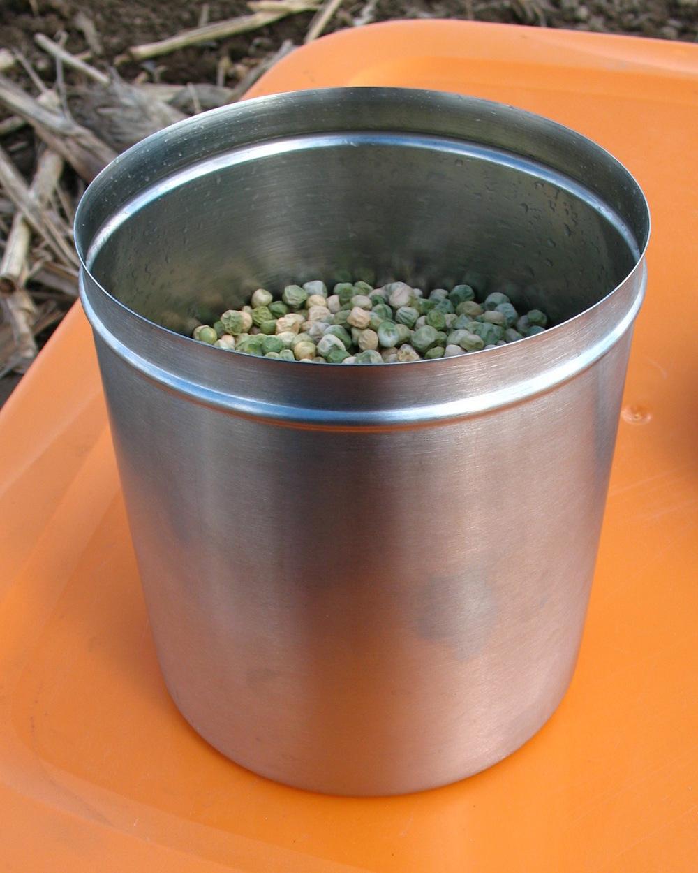 Pea-Seed.jpg
