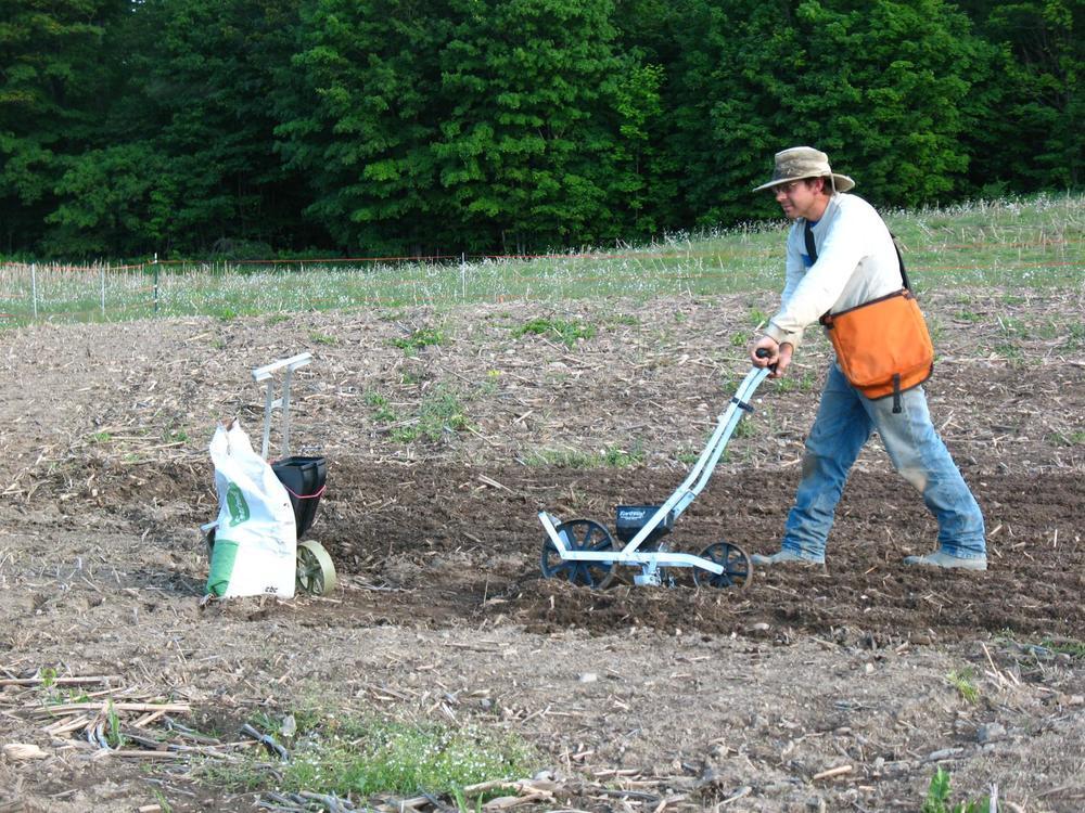 Matt-seeding_1632x1224.jpg