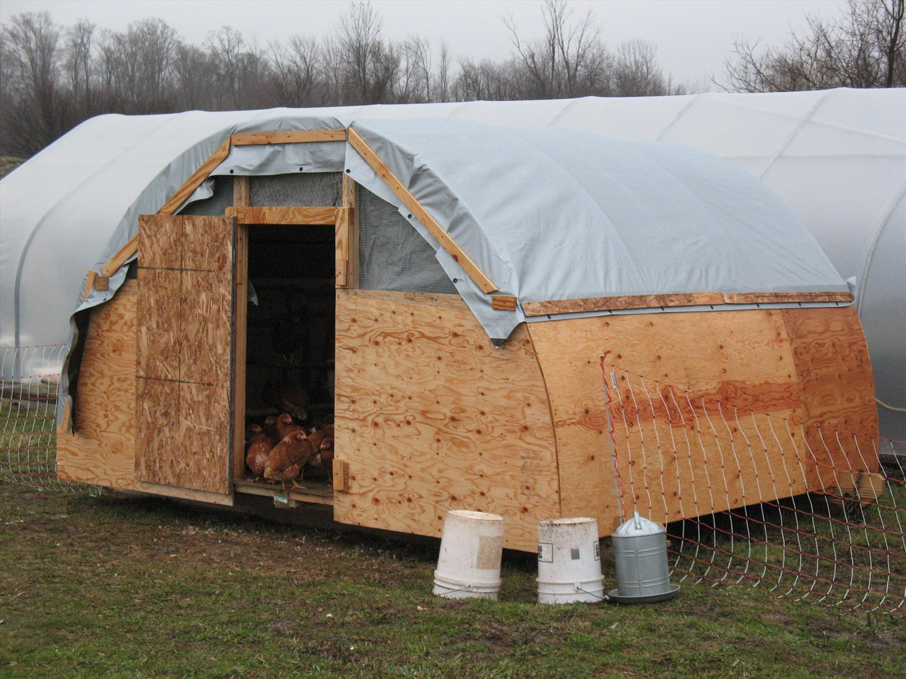 The final shot of tarp roof, with rain curtains over the hardware fabric.  We just need to paint the exposed wood and let the hens settle into their new home and fields!
