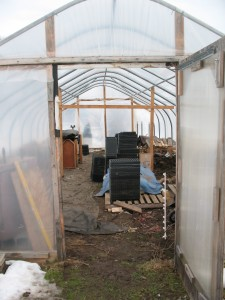 Greenhouse spring cleaning!