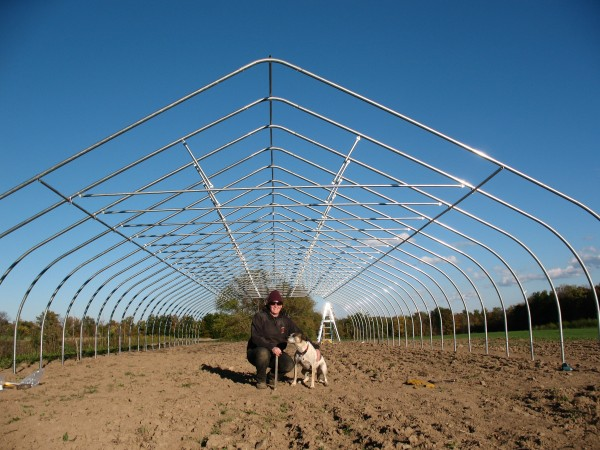 Canine manager checking out the frame and purloin installation.