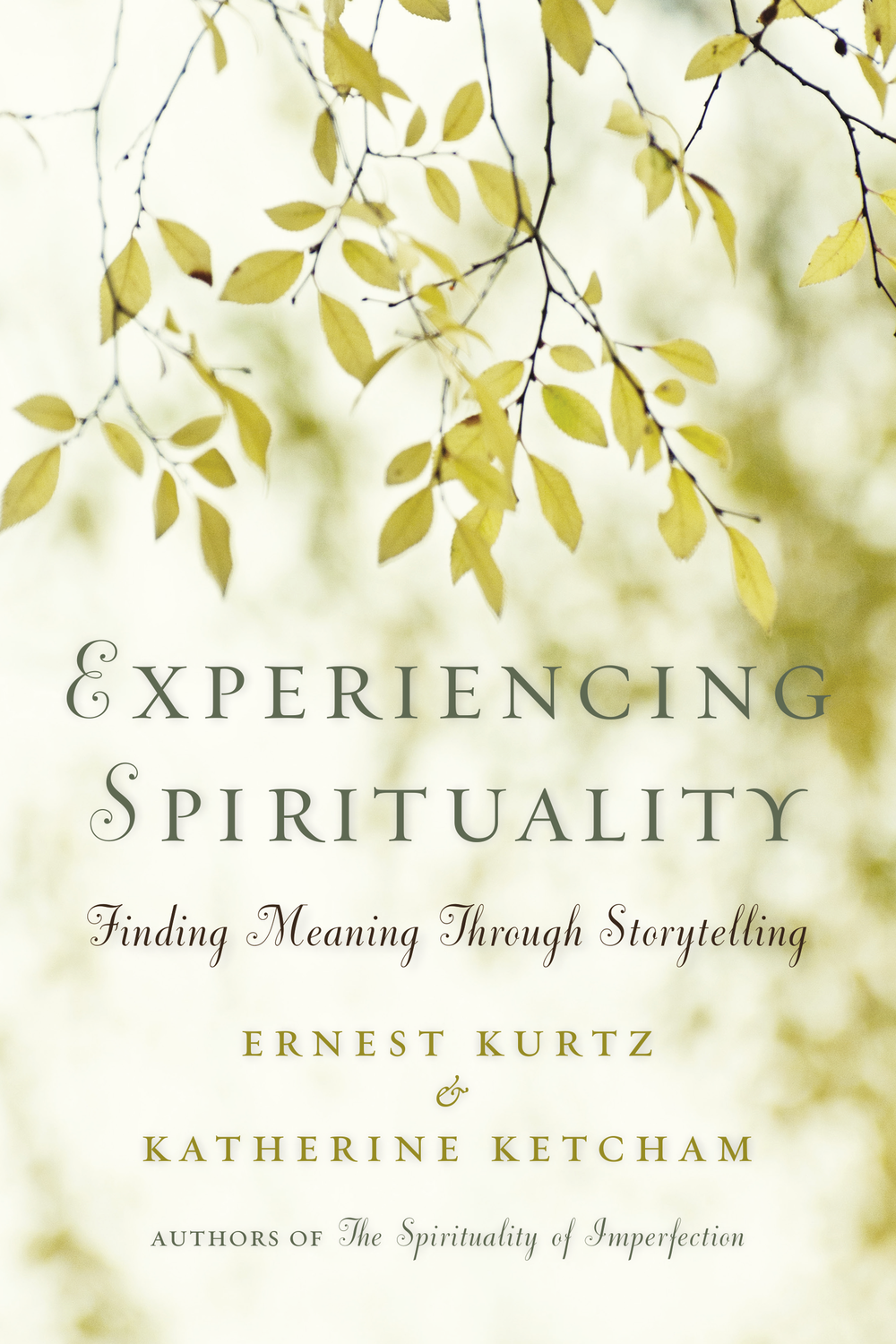 Experiencing Spirituality Book Cover