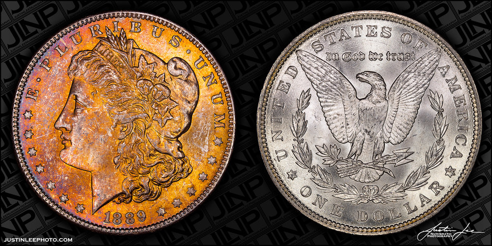1889 Morgan Dollar Raw