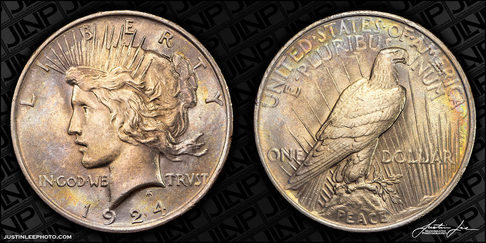 1924 Peace Dollar Raw