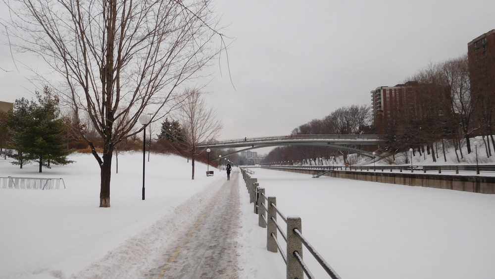 And all the while, the Rideau Canal Skateway leaps beneath the snow.