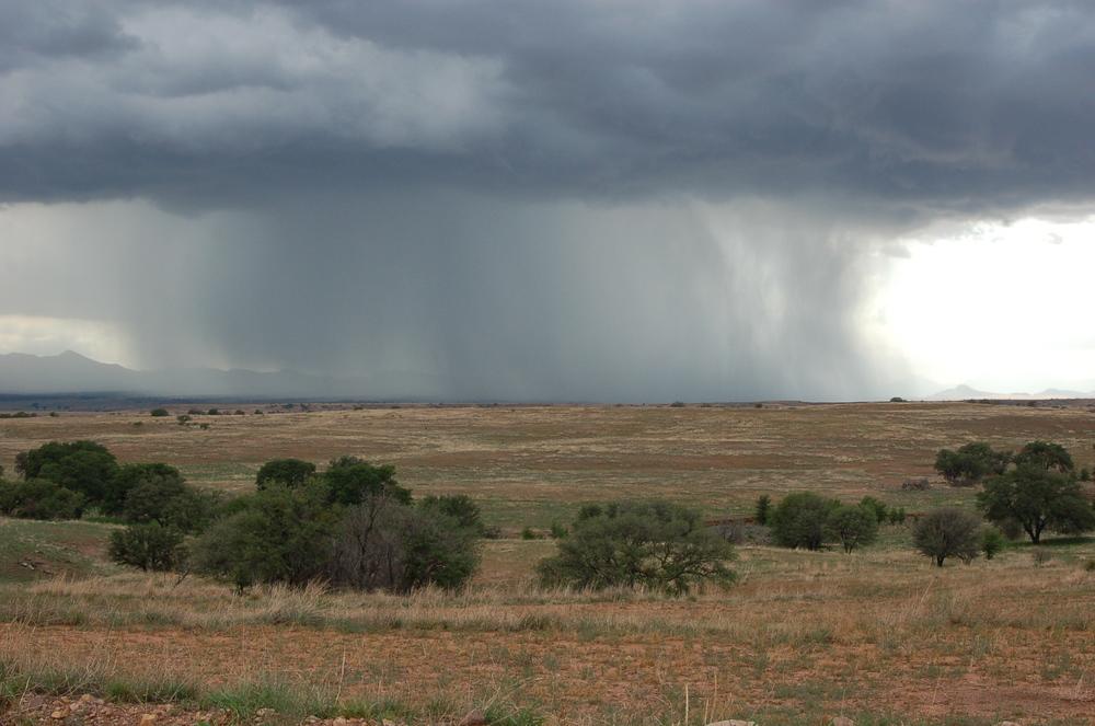 Arizona Monsoons