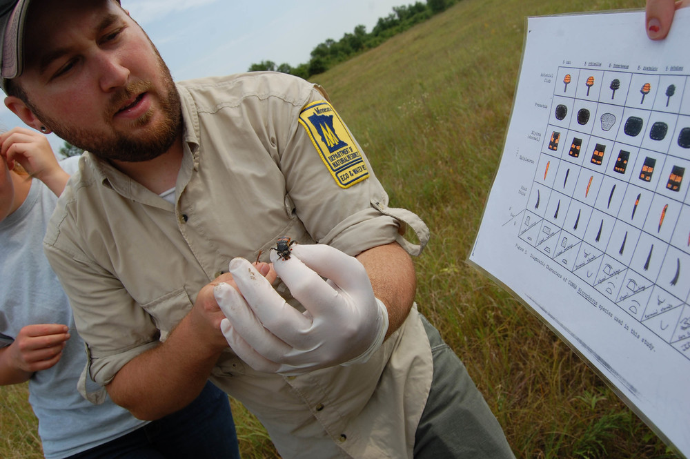 DNR Nongame Wildlife Specialist Chris Smith demonstrates the use of an identification chart to determine what types of burying beetles have been found in a trap set out in the Sherburne National Wildlife Refuge.