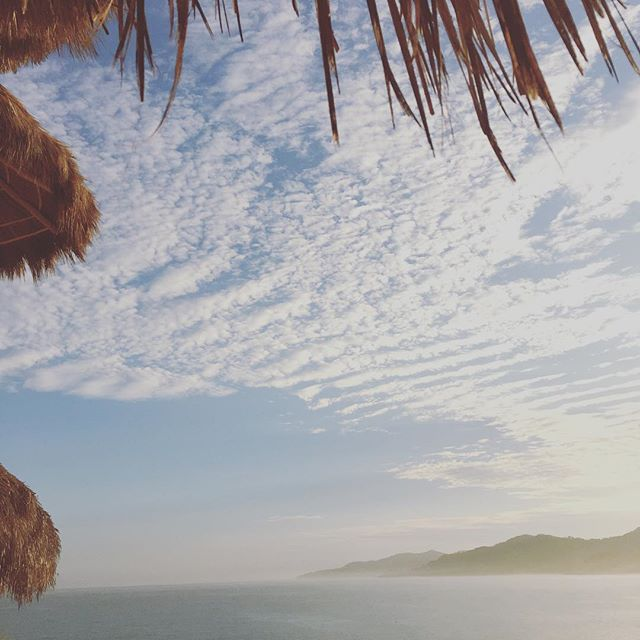 Sayulita, Mexico // I loved waking up to this view and having my morning coffee in an open air kitchen four mornings in a row! Back home now and sending much love to the newly married couple @thalisa831 and @solansea (I danced so much I forgot to get a photo with you two!)
