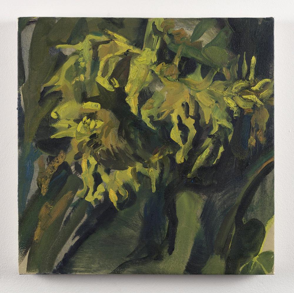 Sunflower 5, 12in x 12in