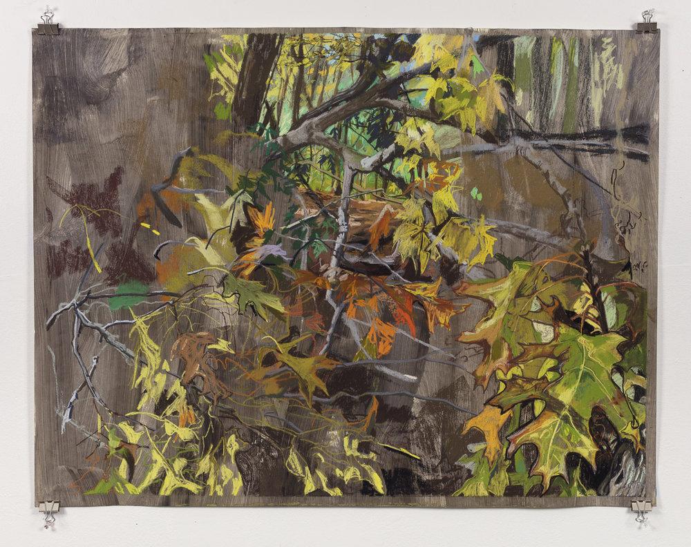 Date with an Oak Leaf, 34in x 46in