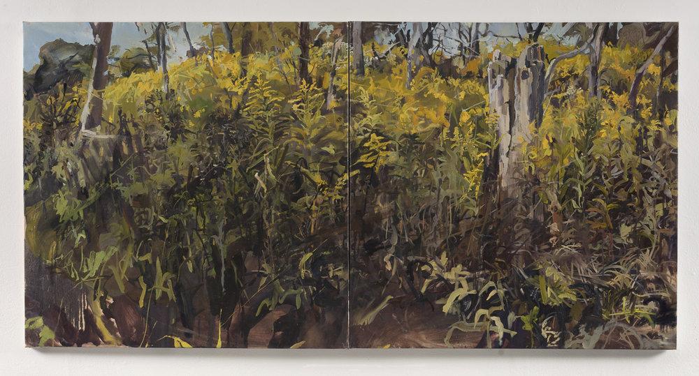 Skokie Lagoon I   2017, Oil on Canvas, 3ft x 6ft