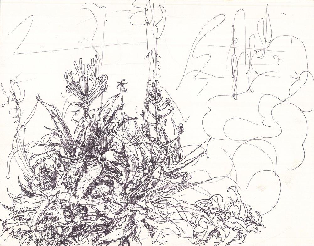Succulent 2, 12in x 15in