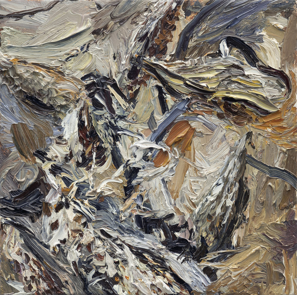 Milkweed No.2   10in x 10in, oil on linen, 2018