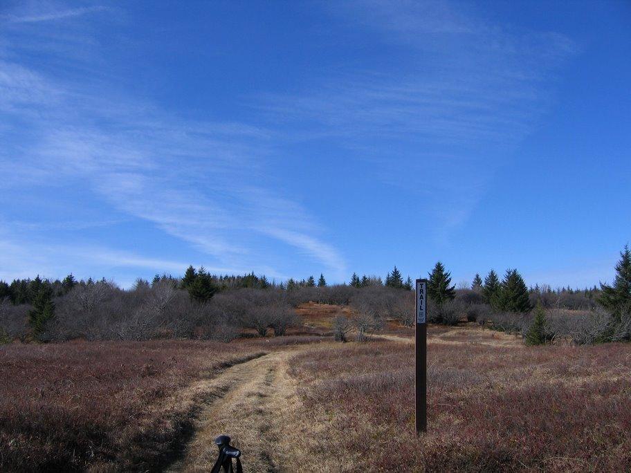 Hiking23.jpg