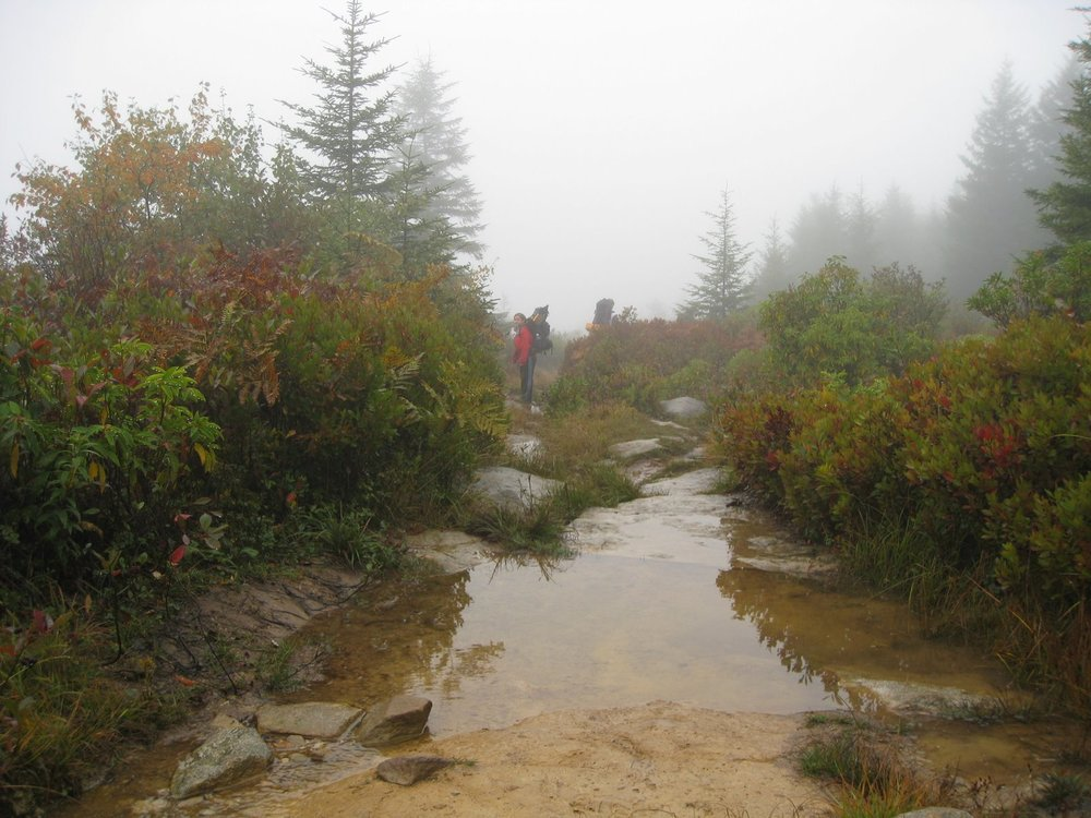 Dolly Sods 09-08 003.jpg