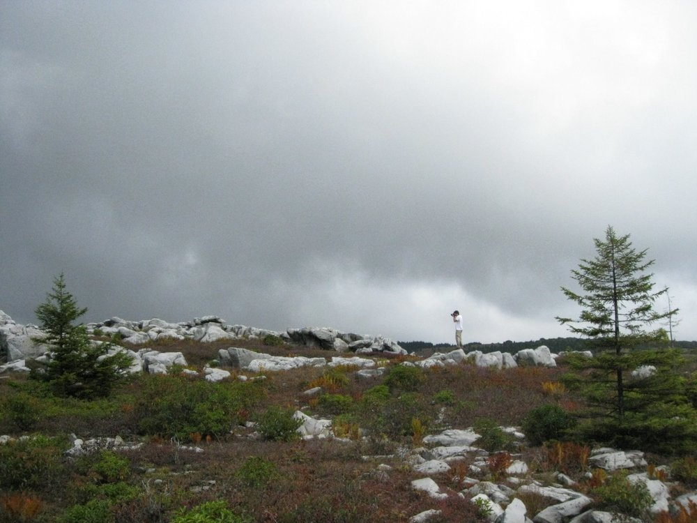 Dolly Sods 09-08 031.jpg