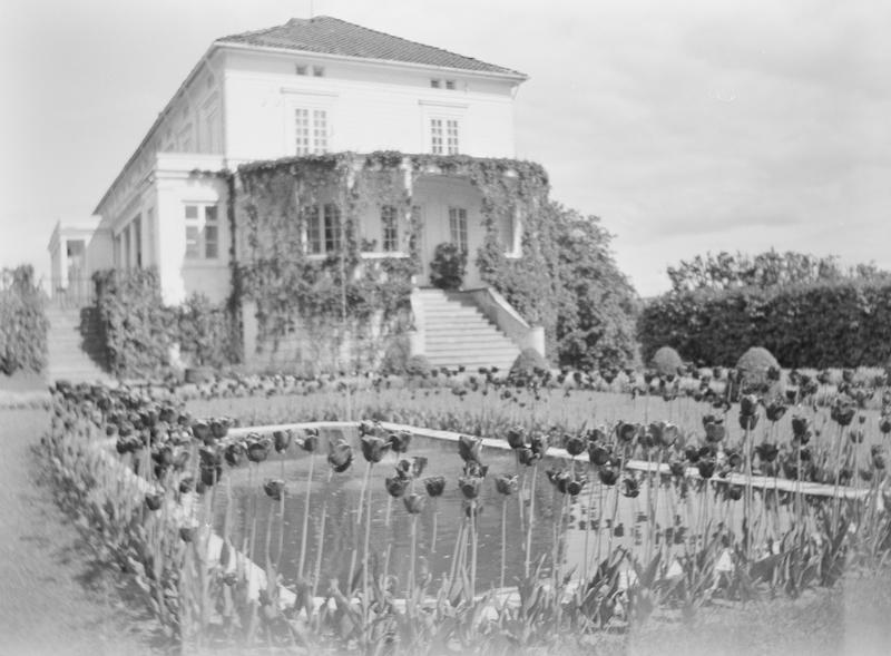 Den Victorianske hagen på Linderud Gård med fontene kranset med tulipaner. I bakgrunnen sees hovedhuset på Linderud Gård med verandaen.