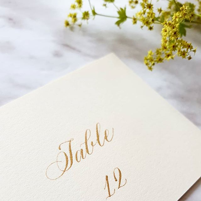 Pretty placecards to brighten up this rainy thursday. Classic gold on beautiful @craneandco cards.❤ Excited to be visiting @openstudio_toronto this evening for their annual fundraiser! If you'd like to check out and purchase beautiful prints, come check it out at @401richmond today at 6! It's free admission 😄 . . . . #papertrails #placecards #escortcards #tablesetting #seatingplan #wedding #weddingseason #classic #copperplate #flourish #flourishforum #calligraphymasters #designspiration #typegang #thedailytype #typespire #goodtype #weddinginspiration #weddinginspo #torontowedding #6ix #pointedpen  #torontoevents #whatsontoronto