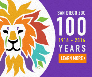 <strong>SAN DIEGO ZOO's 100th ANNIVERSARY<br>Creative Development, Show Writing</strong>