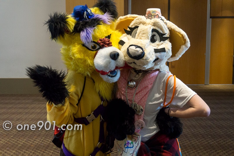 More furries!!!!