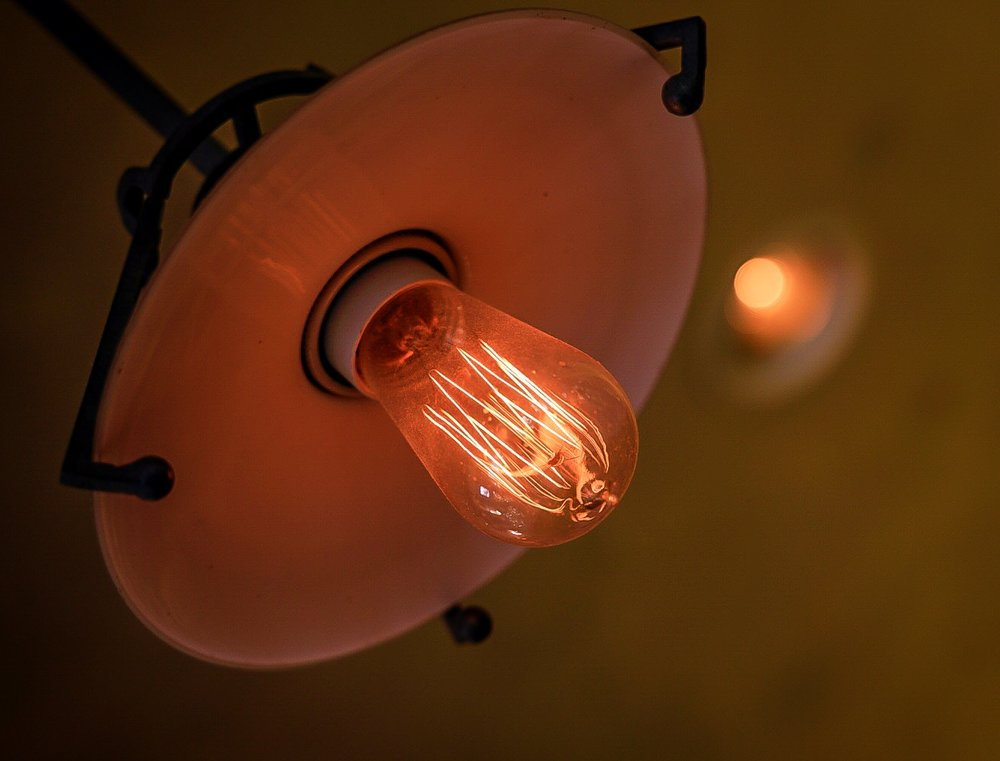 I loved this bulb at The Second Line