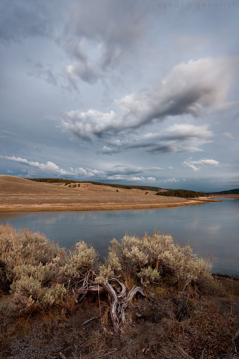 Sagebrush Overlook - Hayden Valley - Yellowstone National Park -