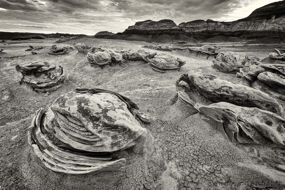 Once Upon A Time - Bisti Badlands - Egg Factory - Farmington NM