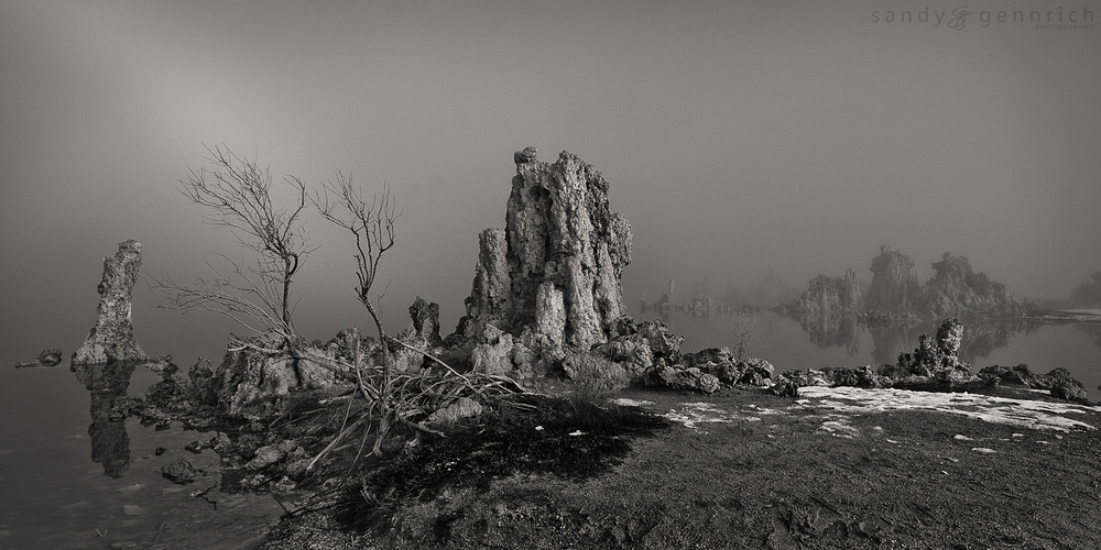 Winter Fog at Mono Lake B&W - Lee Vining - CA