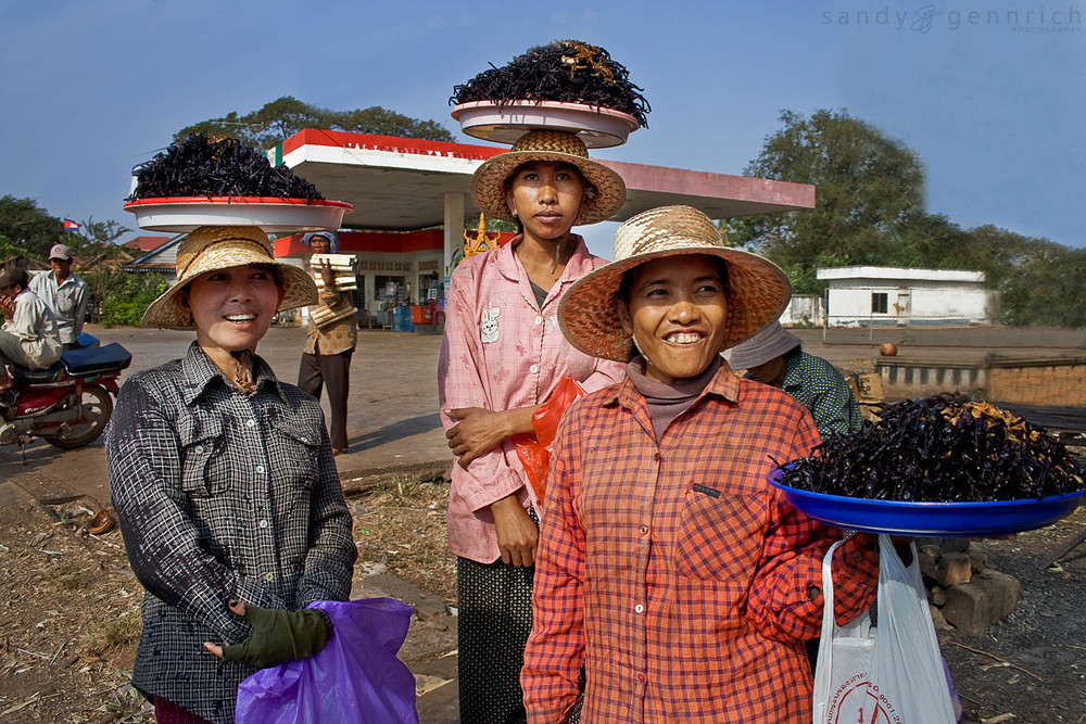 Tarantula Ladies - Skuon - Cambodia
