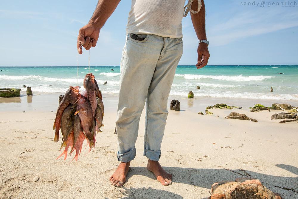 Daily Catch-Cuba-Havana