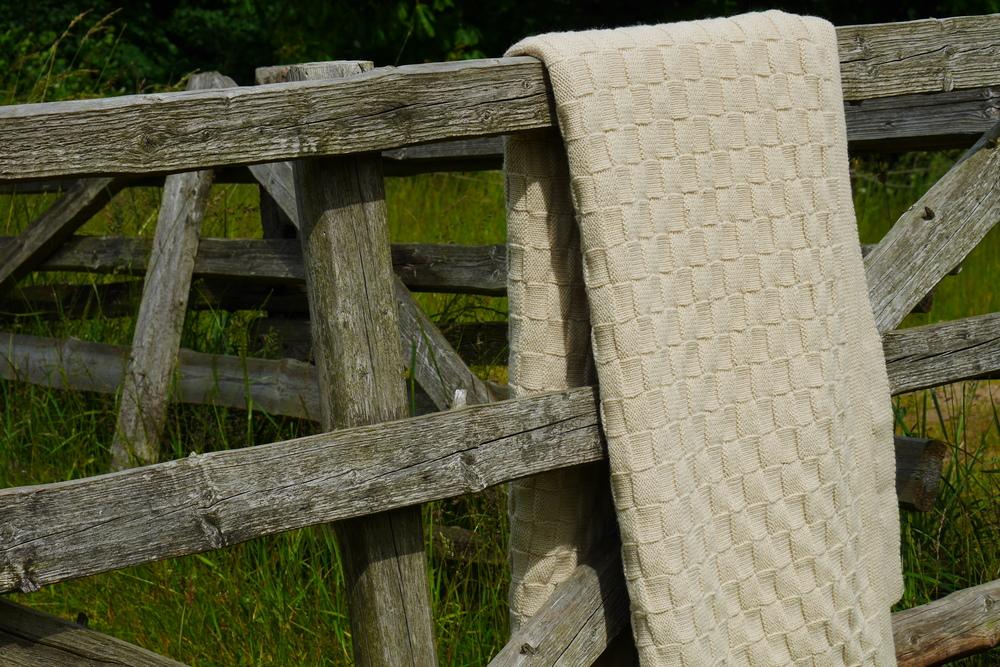 wool knit.JPG