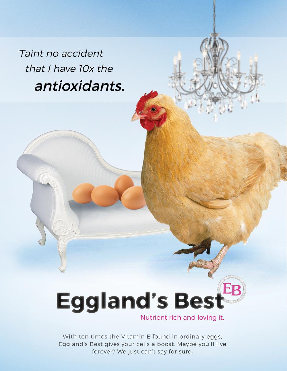 Egglands Print7.jpg
