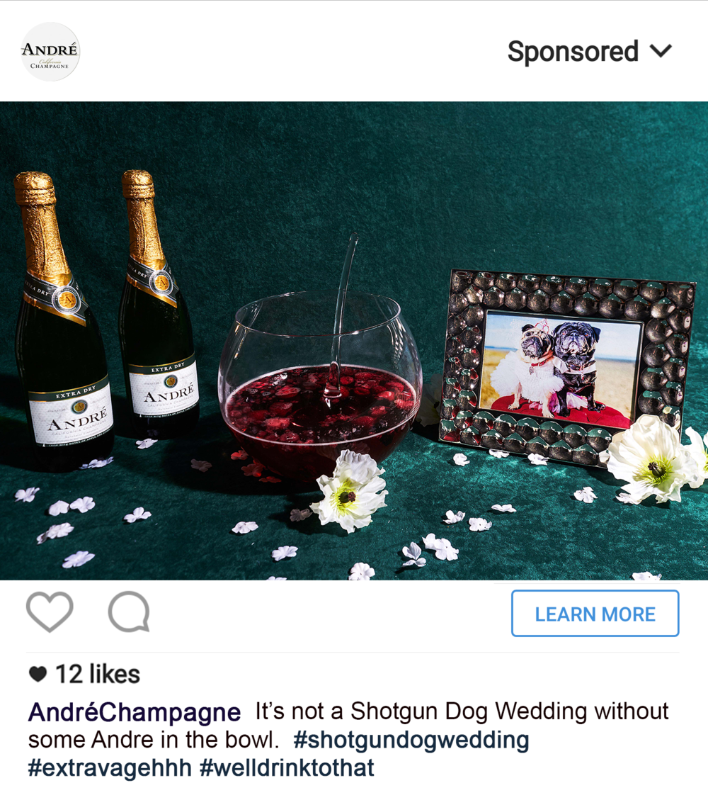 andre dog wedding.png