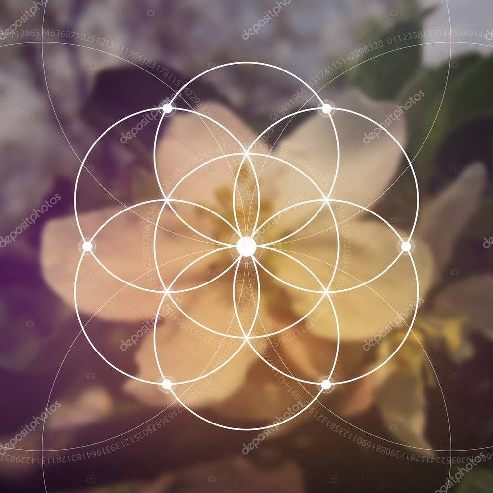 depositphotos_121875390-stock-illustration-flower-of-life-the-interlocking (1).jpg