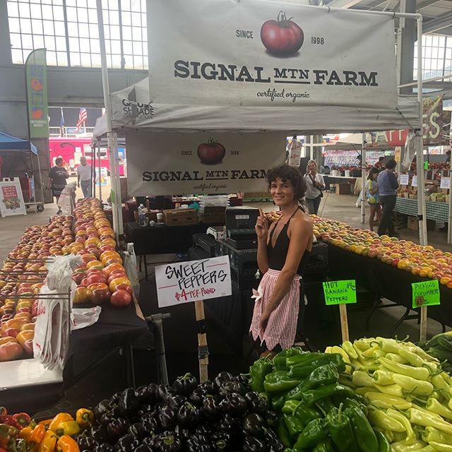 Set up and ready at the @chattamarket today 11-4 . #signalmtnfarm #since1998 #signalmountainfarm