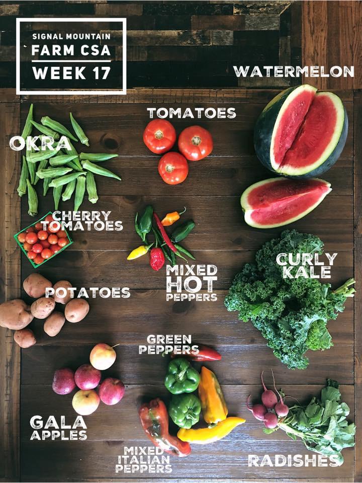 week17.jpg