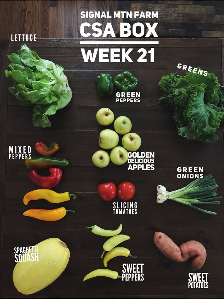 week21.jpg