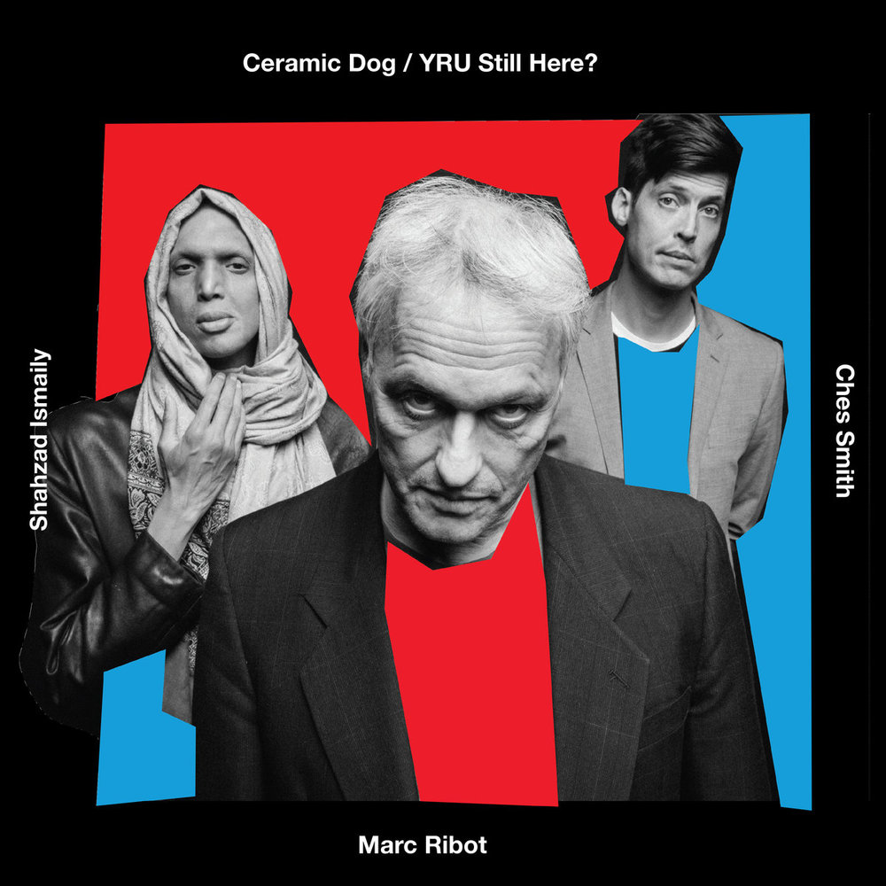 Ceramic Dog - YRU Still Here?