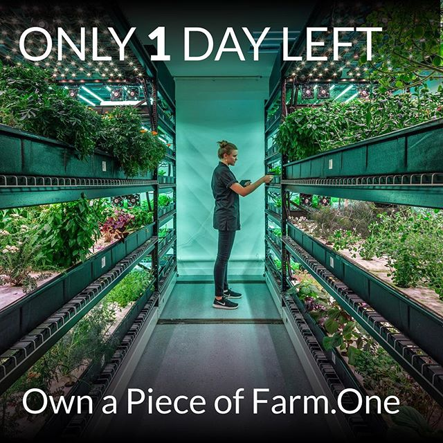 Just a few hours left to invest in Farm.One. Help tip us over the $450K mark! Visit our link in bio for more...