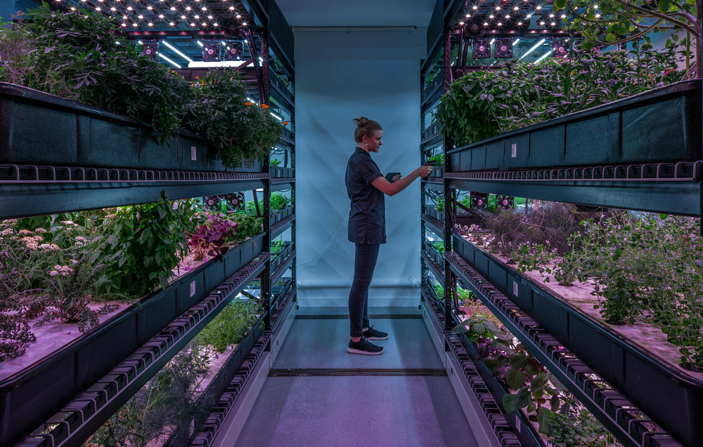 Farm.One: Technology Powered Vertical Farms For Specialty Produce