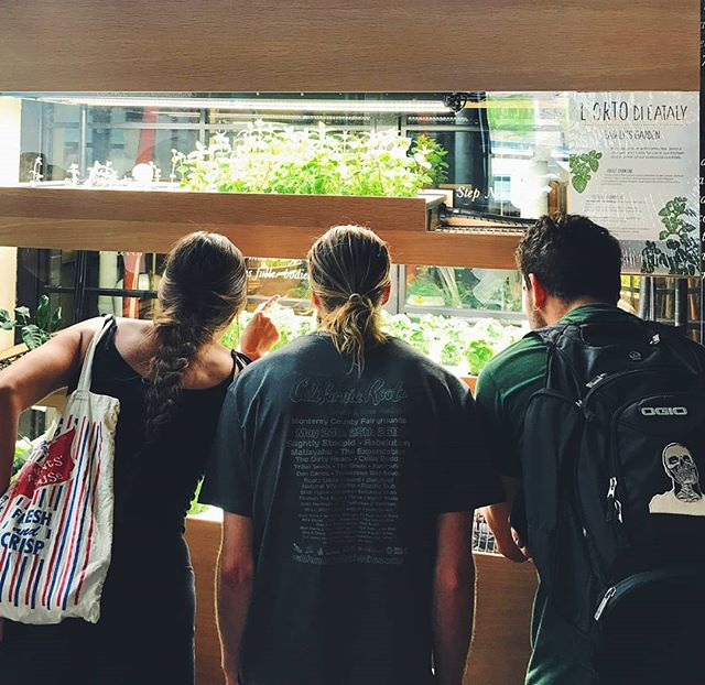 We had lunch today at @eatalyflatiron, the site of our newest vertical farm installation in #NYC. Our team got their first views of the fresh herbs growing inside for the delicious greenhouse-inspired menu at #SerraOntheRoof! 🌱🍽 | 📸: @julia_black #farmonexeataly #eataly #serra #nyceats #food #cleaneating #farm #farmtotable #serrabybirreria