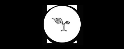 Conscious, Eco Living